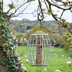 Chapelwood Ultra Squirrel Proof Seed Feeder