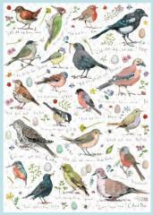 BirdsongJigsaw 1000 Pieces
