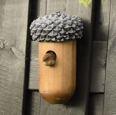 Fallen Fruits Acorn Nest Box - bird