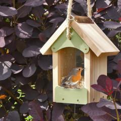 barn seed feeder - robin
