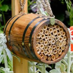 Wildlife World Bee Barrel - display