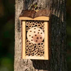 Nooks & Crannies Insect Cabin - lifestyle