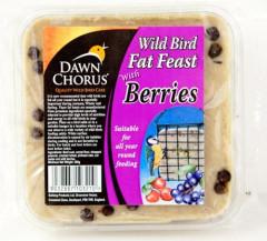 Everyday Wild Bird Fat Feast with Wild Berries