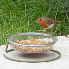 Jacobi Jayne I love Robins Easy Clean Treat Dish - robin