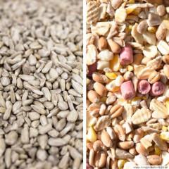 No Grow No Waste Seed Mix & Sunflower Hearts Bundle