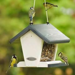 National Trust Geneva Feeding House - Lovely birds