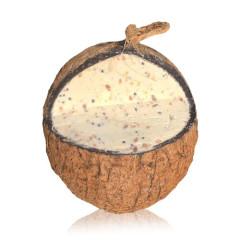 Everyday Original 3/4 Coconut Suet Shells