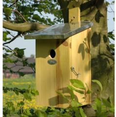 Fallen Fruits Observation Nest Box - lifestyle side