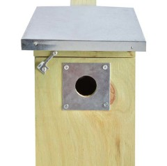 Fallen Fruits Great Tit Nest Box Protection Plate (32mm) - on box