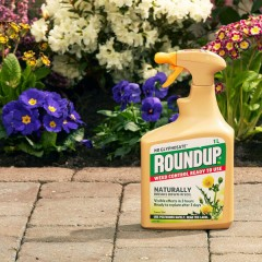 Roundup Natural Weed Control Ready To Use 1L - lifestyle