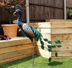 Standing Metal Peacock - in garden