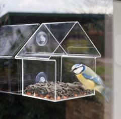 Fallen Fruits Window Feeder House - bird