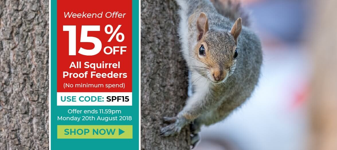 Home Page Banner - Squirrel Proof Feeders Offer