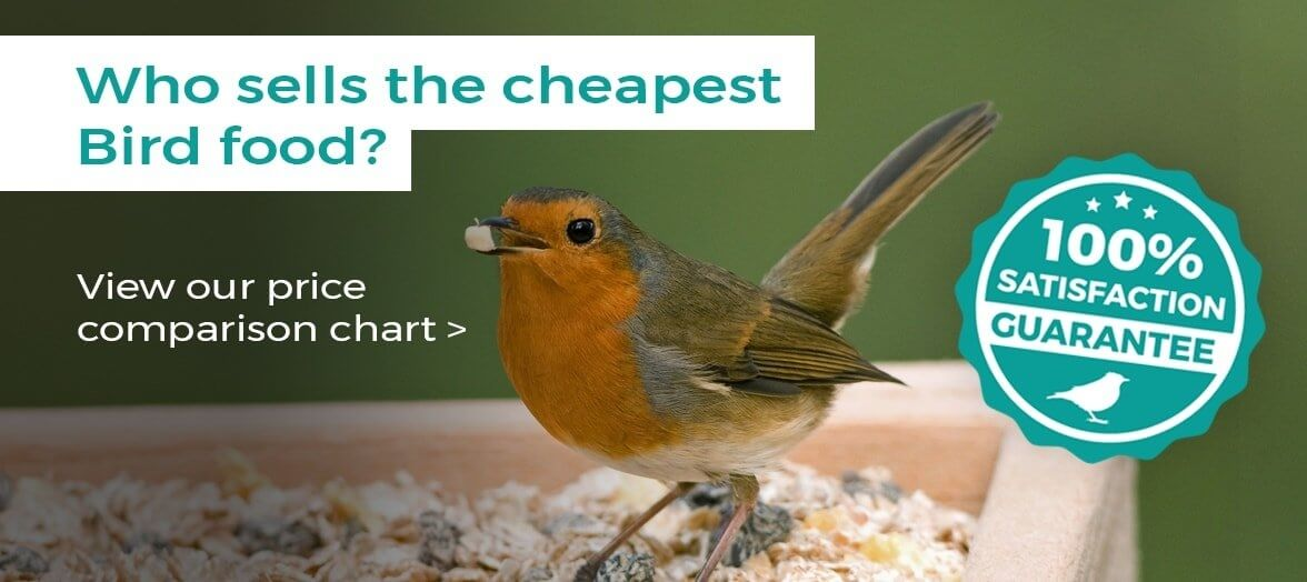 Cheapest Bird Food in UK
